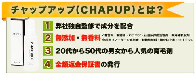 chapup0001
