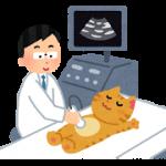 ミノキシジルの副作用は肝臓だけでなくペットにも悪影響を与える!?